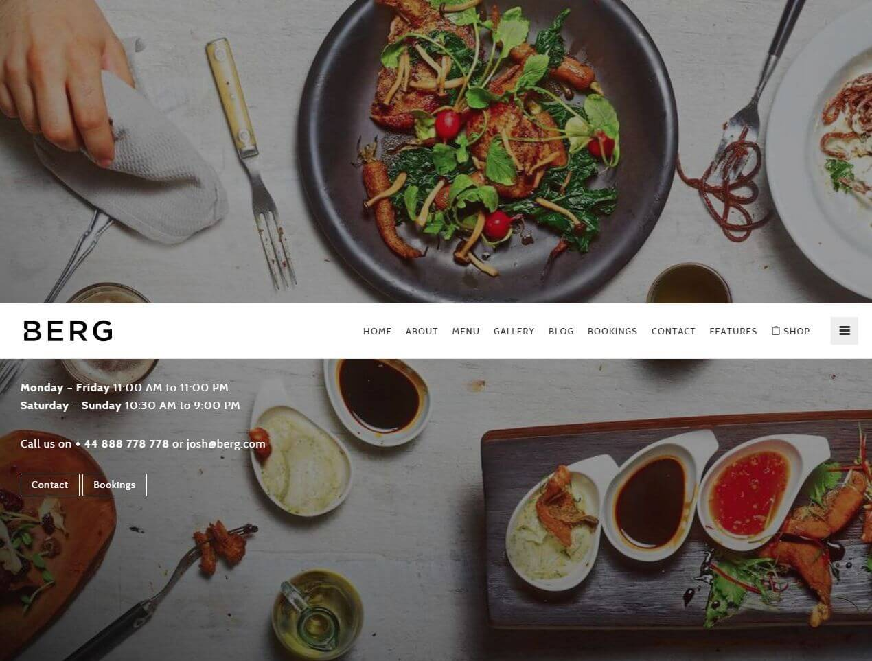 FireShot Screen Capture #178 - 'BERG I Next Generation Restaurant WordPress Theme I Best Restaurant Experience' - demo_yosoftware_com_wp_berg-wp