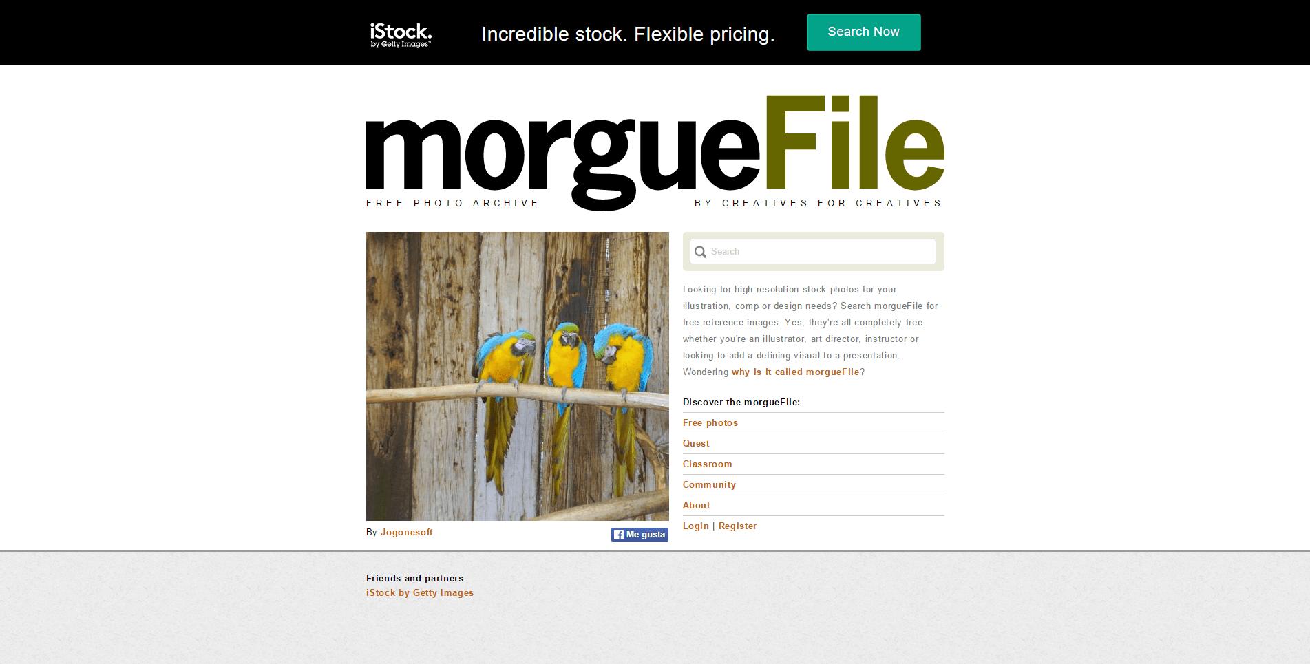 morguefile_com